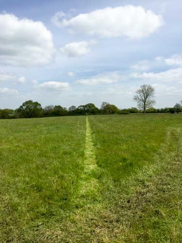 Retrieving lane